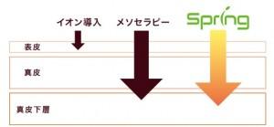 皮膚断面略図 (1)